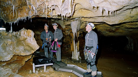 cave of forgotten dreams Werner herzog gains rare access to the chauvet caves of southern france to film the oldest known images of mankind he puts 3d technology to a profound use, taking us back in time over 30,000 years.