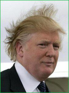 grouchyeditor.com Trump